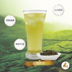 迎香青茶、迎香烏龍、迎香茶、迎香青茶批發、烏龍茶、青茶、清茶、飲料茶葉、高山茶、商用茶葉、Ying Xiang Green Tea